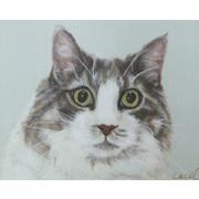 愛猫、愛犬の絵を描きます